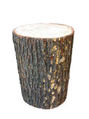 Birch wooden log isolated on white — Stock Photo