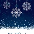 Snowflake decorations - Image vectorielle