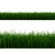 3d grass line - Stock Photo