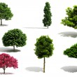 3d tree pack - render on white background — Stock Photo #5251554