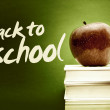 Back to school — Stock Photo #4110137