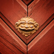 Door detail — Stock Photo #5129255