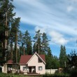 Cottage in the woods — Stock Photo