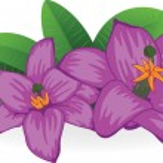 sfondo floreale — Vettoriale Stock  #4904212