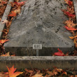 Gravestone — Stock Photo