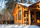 Wooden house at pine forest — Stock Photo