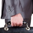 Business man holding suitcase — Stock Photo #5346470