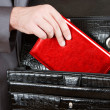 Stock Photo: Hand taking red organizer from briefcase