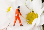 Figurine of worker carrying camomile — Stock Photo