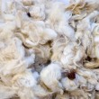 Macro shot of wool — Stock Photo