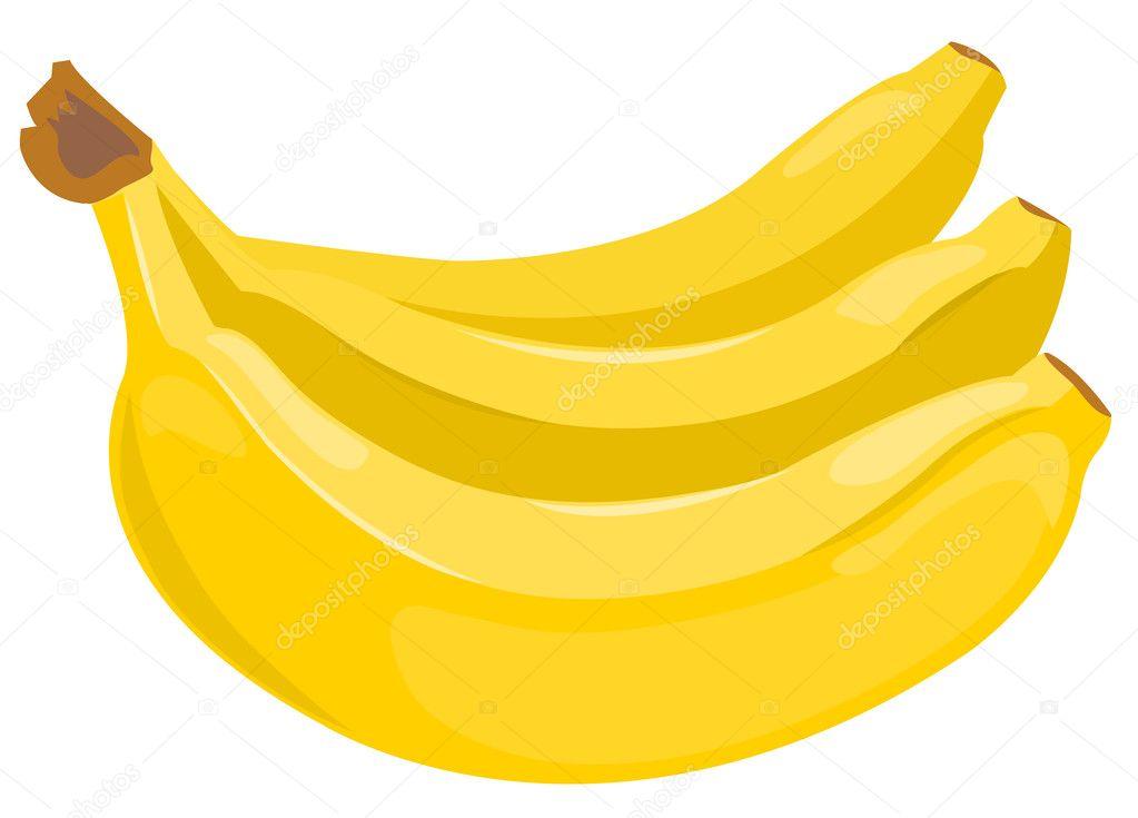 Sheaf of bananas stock vector 169 amalga 4798660