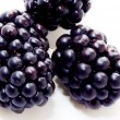 Blackberries — Stock Photo #4244434