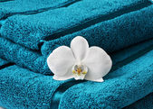 Close up of towel and orchid — Stock Photo