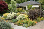 Garden landscaping — Stock Photo