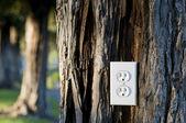 Light socket — Stock Photo
