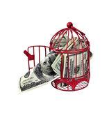 Money Flying the Coop — Stock Photo