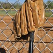 Baseball Bat and Glove — Stock Photo