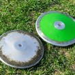 Silver and Green Discus — Stock Photo #5228442