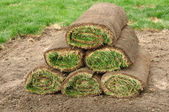Stack of Sod Rolls — Stock Photo