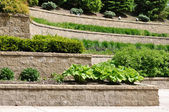 Tiered Retaining Wall — Stock Photo