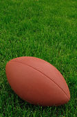 Football on a grass playing field — Stock Photo