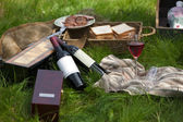 Picnic still life — Stock Photo