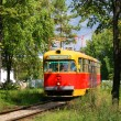 An old tram in bushes - Stock Photo