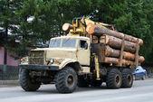 Timber lorry — Stock Photo