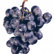 Grapes — Stock Photo #4289233