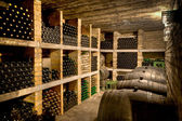 Wine cellar — Stock fotografie