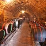 Wine barrels — Stock Photo #5223254