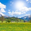 Alpine landscape — Stock Photo #5223429