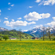 Alpine landscape — Stock Photo #5223435