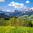 Alpine landscape — Stock Photo #5223620