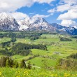 Alpine landscape - Photo