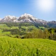 Alpine landscape — Stock Photo
