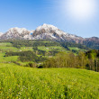 Stock Photo: Alpine landscape