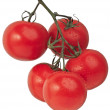 Tomatoe — Stock Photo