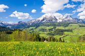 Alpint landskap — Stockfoto