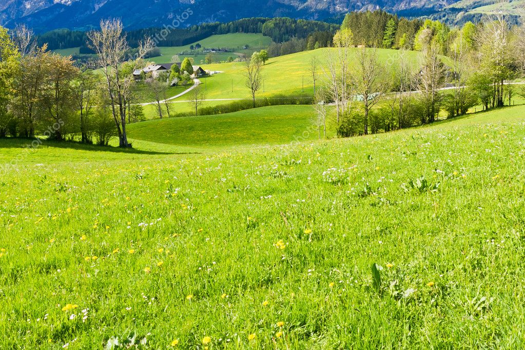 Alpine landscape in the springtime  Stock Photo #5223597