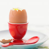 Cooked egg — Stock Photo