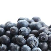 蓝莓 — 图库照片