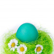 Stock Photo: Easter egg in nest