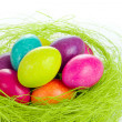 Easter eggs in nest — Stock Photo #5293700