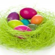 Easter eggs in nest — Stock Photo #5293780