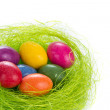 Easter eggs in nest — Stock Photo #5293821