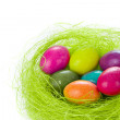 Easter eggs in nest — Stock Photo #5293921