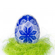 Easter egg in grass — Stock Photo