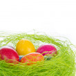 Easter eggs in nest — Stock Photo #5294166