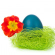Easter egg in nest — Stock Photo #5294388
